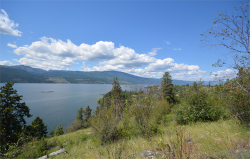 Kelowna Waterfront homes for sale,MLS listings Kelowna,waterfront acreage,waterfront estates